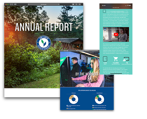 Screenshots of the 2018-19 Annual Report